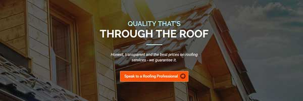 roof building services